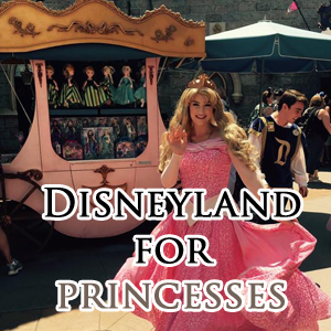 Disneyland for princesses how to do and see it all disneyland daily disneyland for princesses how to do and see it all solutioingenieria Choice Image