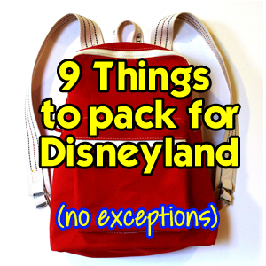 picture regarding You're Going to Disneyland Printable named 9 Components in direction of Pack inside your Backpack for Disneyland No