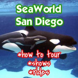 Seaworld San Diego Review Disneyland Daily