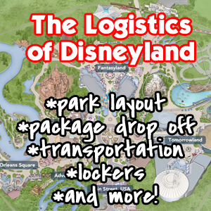 logistics in disneyland - vast knowledge of logistics can be achieved through this internship - you can get a chance to work with great team - responsibilities are given equally to you too.