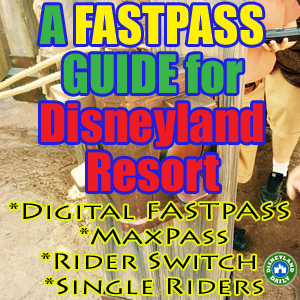 A FASTPASS Guide for Disneyland and California Adventure, Digital